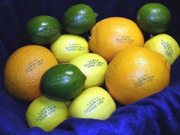 khắc laser trái cây