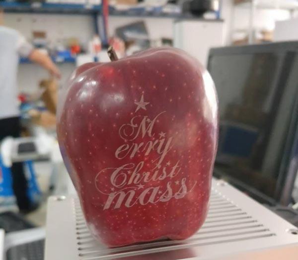 khắc laser trên trái cây